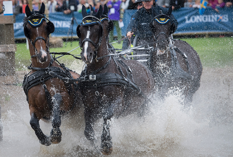 The Fédération Équestre Internationale (FEI) has today allocated host cities for 13 FEI Championships for the next two years and nine FEI Driving World Cup™ legs for the 2019/2020 season. Photo by FEI/Richard Juillart