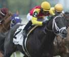 Kingsport and jockey Patrick Husbands winning the $100,000 Steady Growth Stakes on Saturday, June 15 at Woodbine Racetrack.