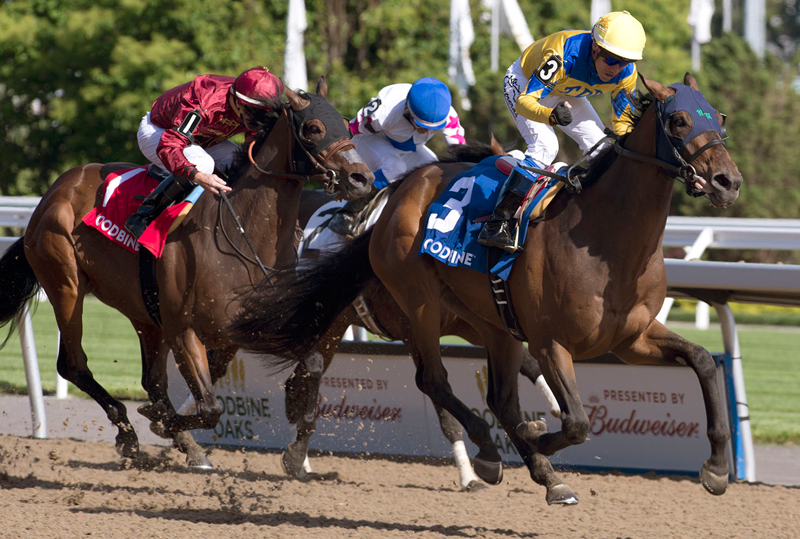 Pay for Peace and jockey Luis Contreras winning the $125,000 Plate Trial Stakes on June 8 at Woodbine Racetrack. Michael Burns Photo