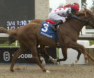 Souper Tapit winning the Grade 2 Eclipse Stakes on May 20 at Woodbine Racetrack.