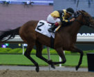 Fast Scene, pictured winning on June 15 at Woodbine, is one of the eight rivals Reiterate will face in Saturday's My Dear Stakes. Michael Burns Photo