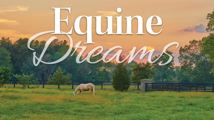 Thumbnail for Five Horse Lovers Who Followed Their Dreams and Changed Their Lives