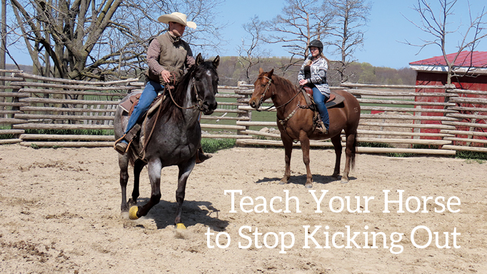 Thumbnail for Train Your Horse Not to Kick Out at Other Horses on Trail