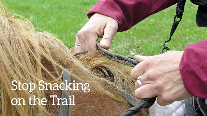 Thumbnail for Stop Your Horse From Snacking While Trail Riding
