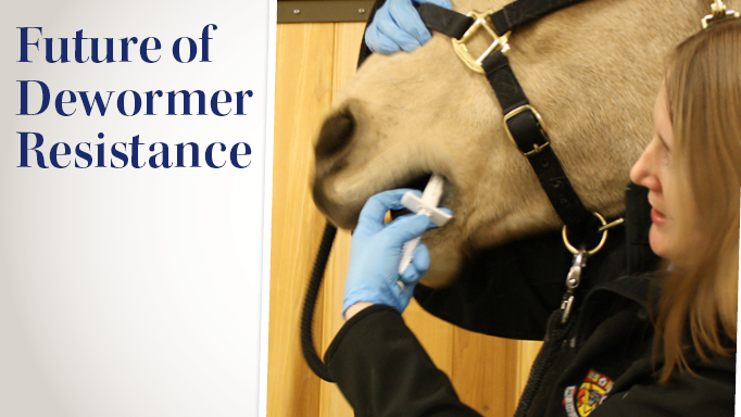 Thumbnail for Using Technology to Predict the Future of Dewormer Resistance