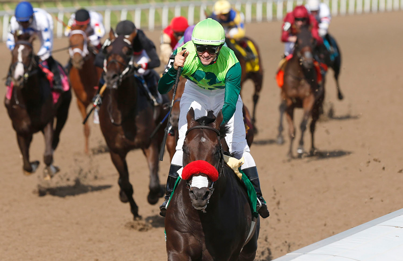 One Bad Boy won the 2019 Queen's Plate – the first jewel of the Canadian Triple Crown. Photo by Michael Burns