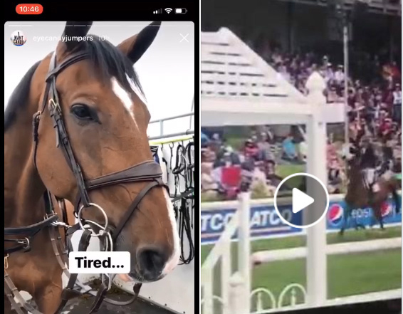 Andrew Kocher is being criticized for riding an exhausted Carollo in the Sun Life Financial Derby the day after he competed in the Queen Elizabeth II Cup. Roy Wilton, Carollo's former owner, is one of the people who was disappointed to see the horse end on 28 faults, and made a social media post about it.