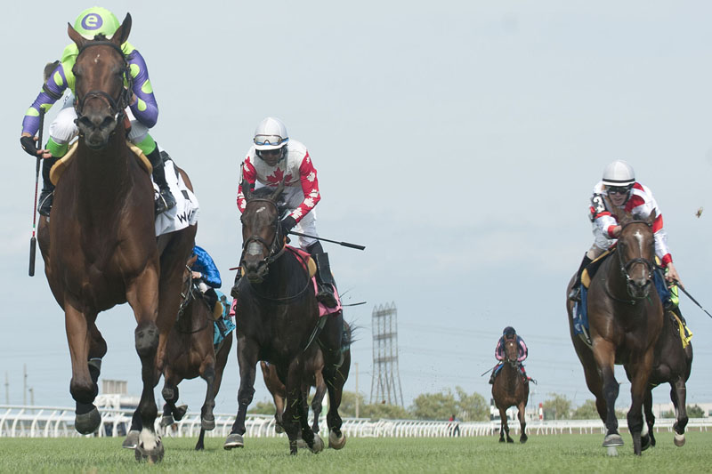 Seek and Destroy and jockey Luis Contreras winning the $125,000 Ontario Colleen Stakes (Grade 3) on Saturday, July 20 at Woodbine Racetrack.