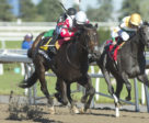 Speedy Soul and jockey Patrick Husbands winning the $225,000 Bison City Stakes on June 30 at Woodbine Racetrack.