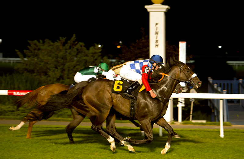 Stormy Rush (#6) and jockey Jesse Campbell winning the first leg of the Woodbine Turf Sprint Series over the new inner turf course on Wednesday, July 10. Michael Burns Photo