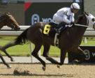 Wake Up Maggie and jockey Justin Stein winning on July 6 at Woodbine Racetrack.