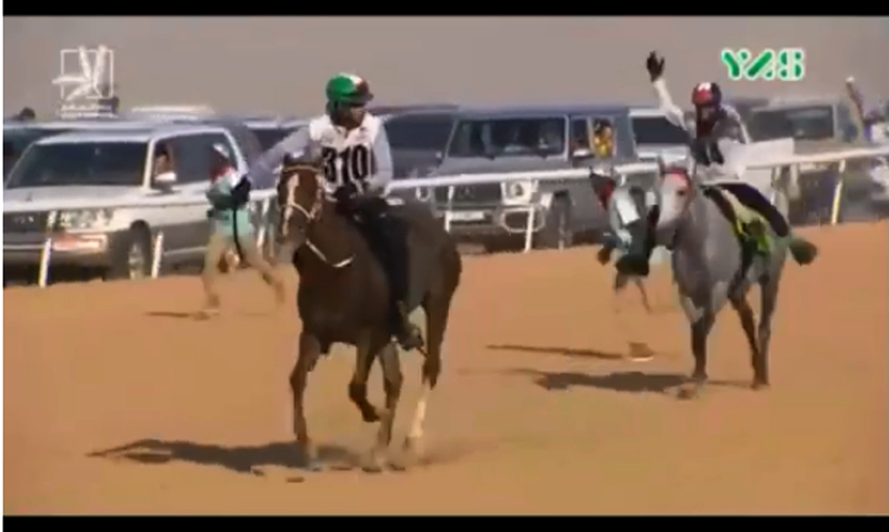 Abdul Rahman Saeed Saleh al Ghailani was banned 12 months and fined 4,000 Swiss francs for his riding of Sarab during the President's Cup 160km race.