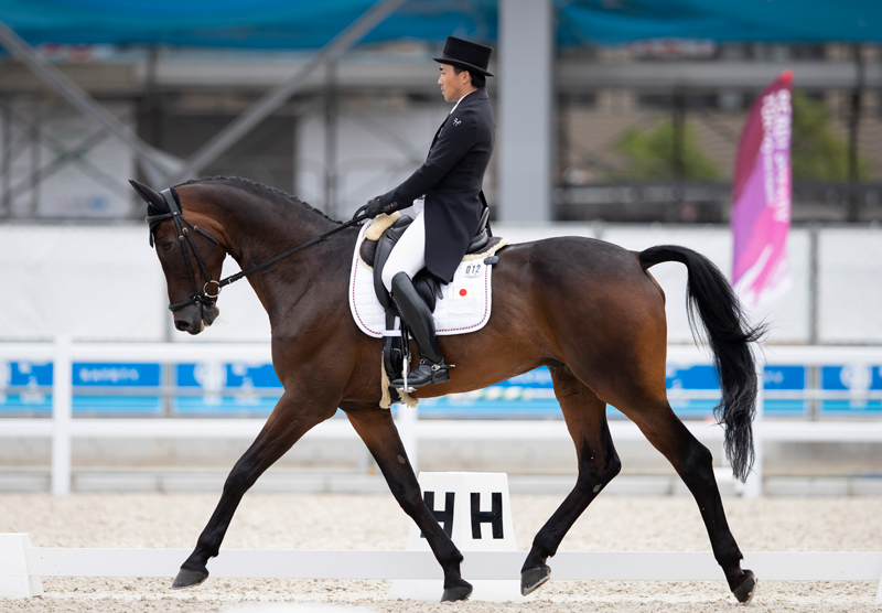Japan's Yoshiaki Oiwa riding Bart L JRA takes the early lead after today's Dressage phase at the Ready Steady Tokyo test event. FEI/Yusuke Nakanishi Photo