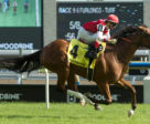 Summer Sunday and jockey Rafael Hernandez winning the $175,000 Royal North Stakes (Grade 2) on Sunday, July 21 at Woodbine Racetrack. Photo by Michael Burns Photo