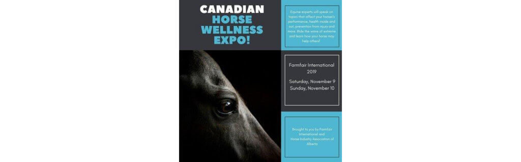 The Canadian Horse Wellness Expo is held each November during Farmfair International and features topics for horse owners, breeders and professionals.