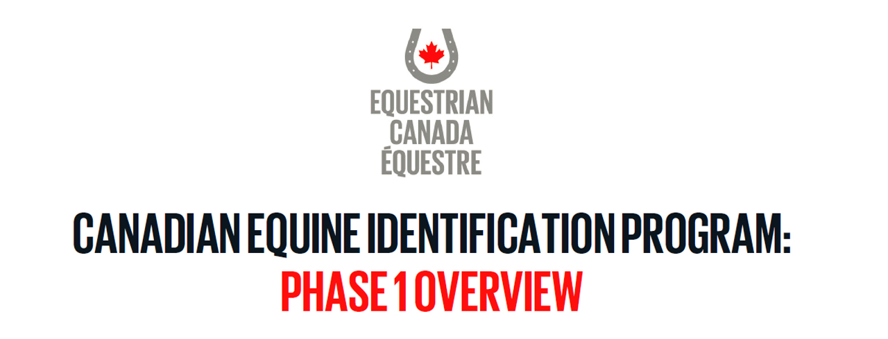 Input Needed on New Canadian Equine Identification Program