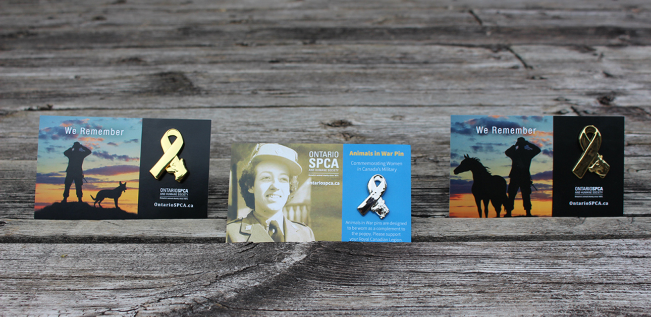 Ontario SPCA and Humane Society Reveal Remembrance Day Pins