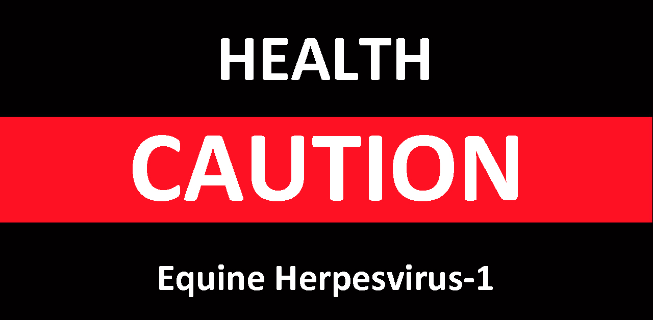 Two Manitoba Mares Die from Neurological Form of Equine Herpesvirus