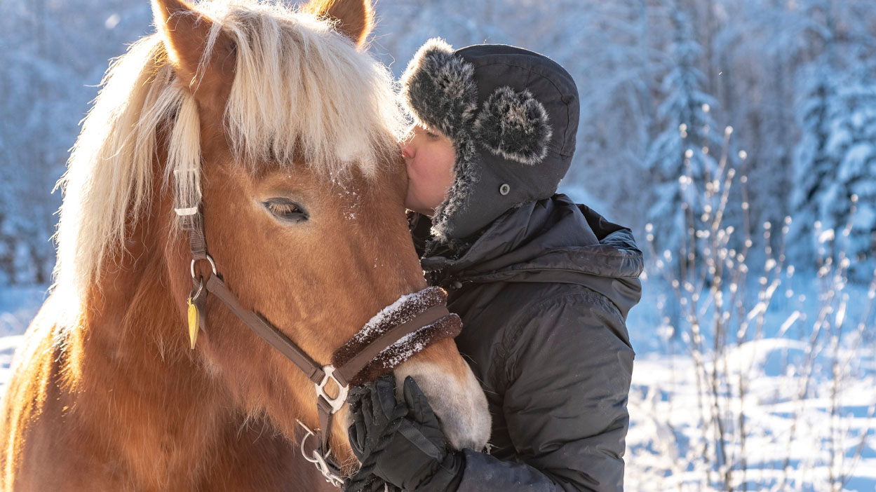 Thumbnail for The Top Seven Winter Horse Care Myths Exposed