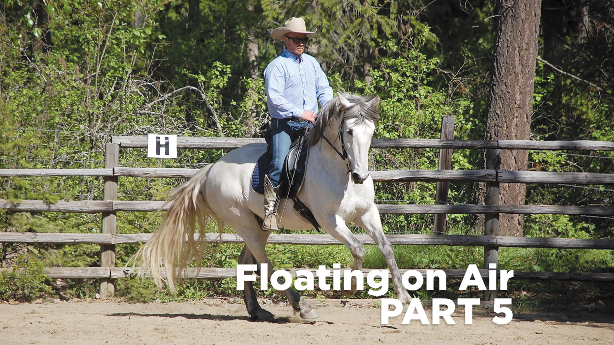 Thumbnail for Using Your Seat and Reins Aids to Help Your Horse Achieve Self-Carriage