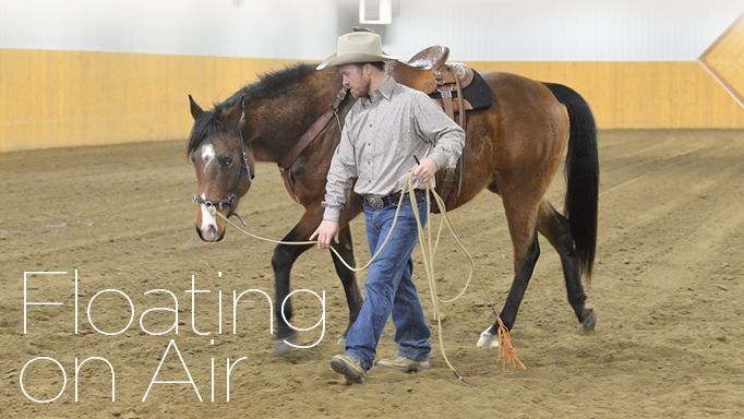 Thumbnail for 5 Ground Exercises to Help Your Horse Achieve Self-Carriage