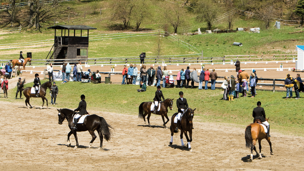 Thumbnail for 14 Tips to Safely Navigate the Horse Show Warm Up Ring