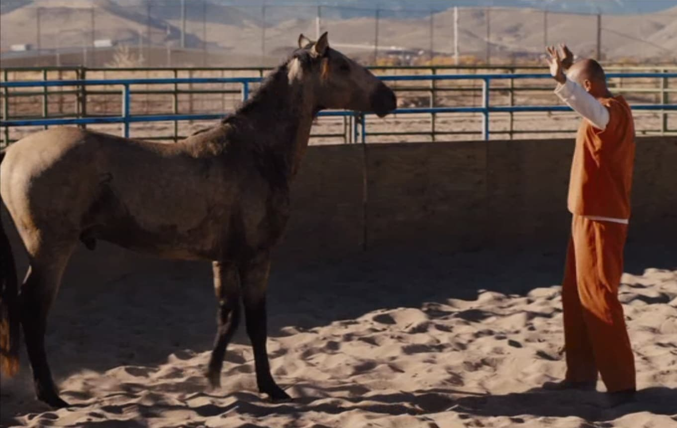 The Mustang movie iTunes