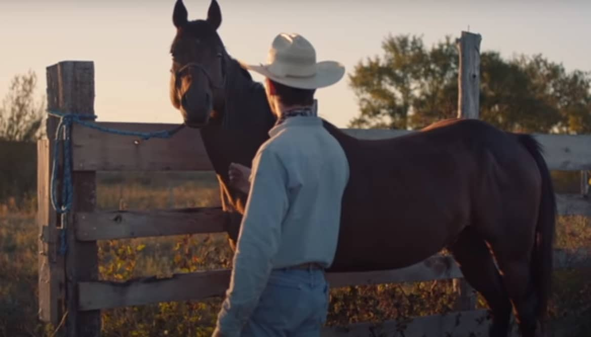 Thumbnail for TheRider2018-trailer1