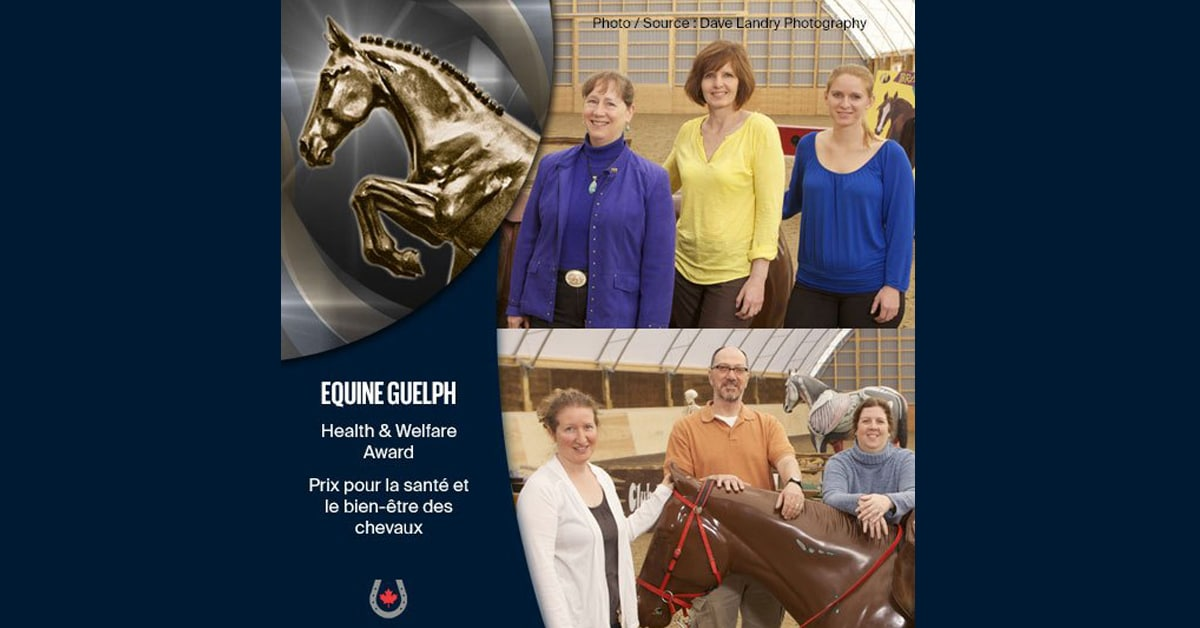 Thumbnail for Equine Guelph Wins EC Health and Welfare Award