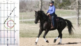 Elaine Ward of the Western Style Dressage Association of Canada and her mare NS Shawnee Hancock.