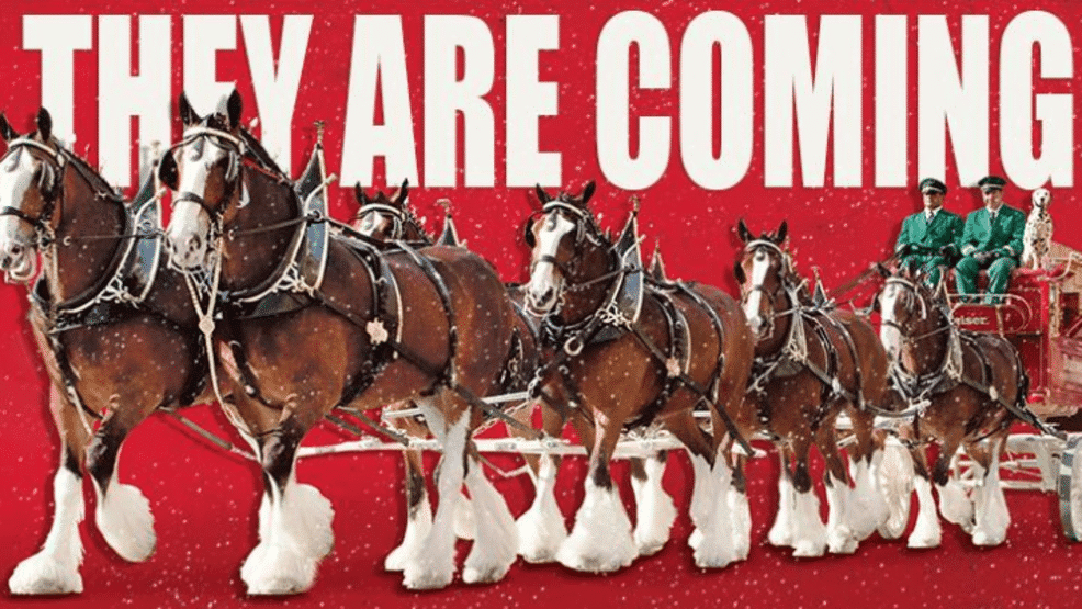 Thumbnail for Clydesdales1