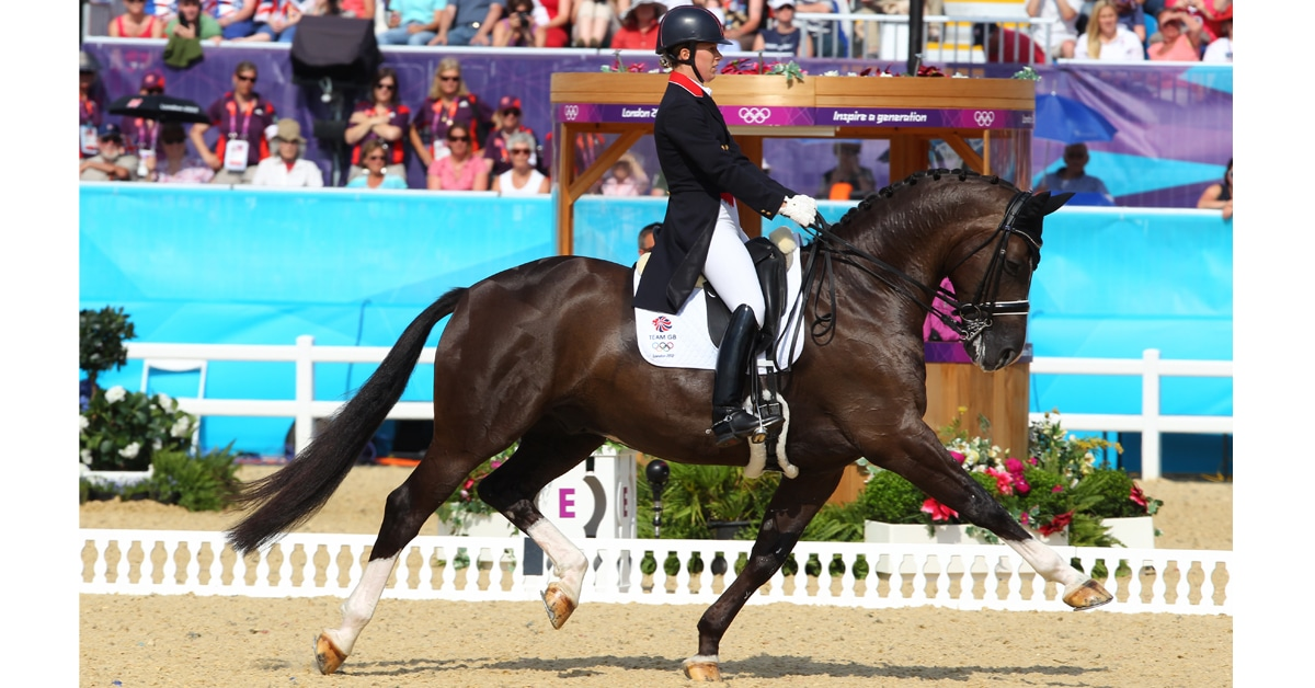 Thumbnail for dressage-horse-web