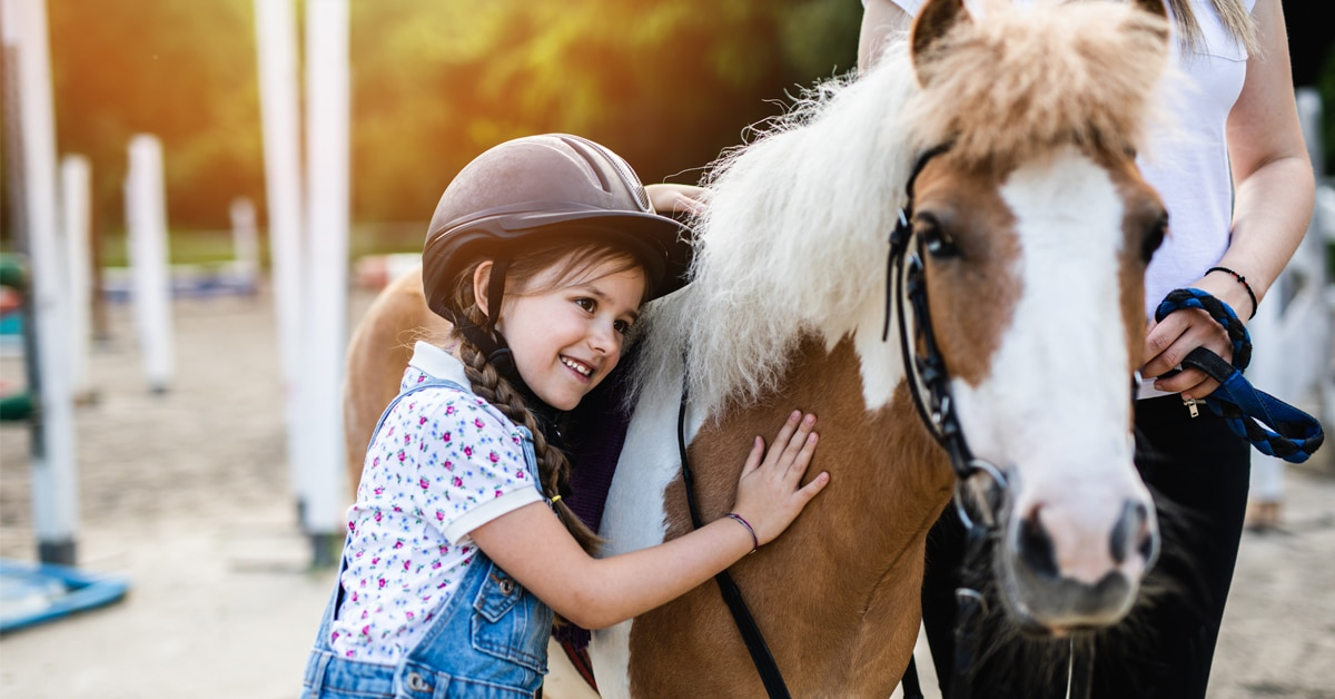 Thumbnail for Horse Summer Day Camps Given Green Light in Ontario