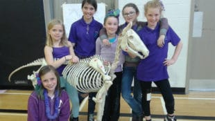 Central Ontario Region members at Regional Quiz - and yes, they did have to label the skeleton parts!