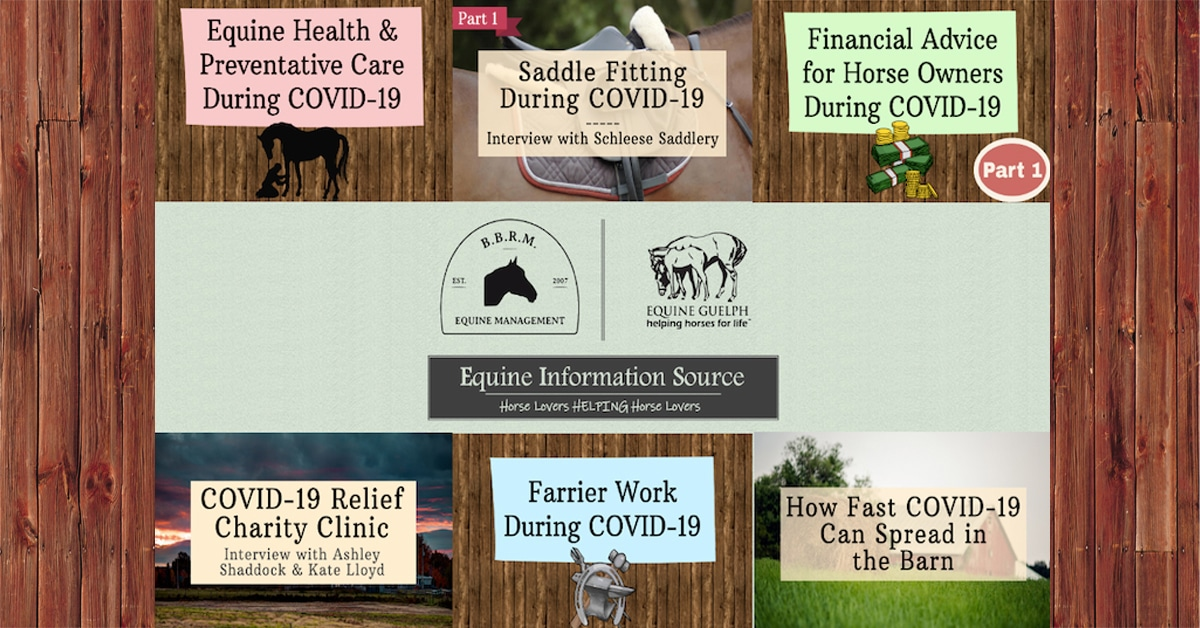 Thumbnail for Equine Information Source: COVID-19 Resources for Horse Owners