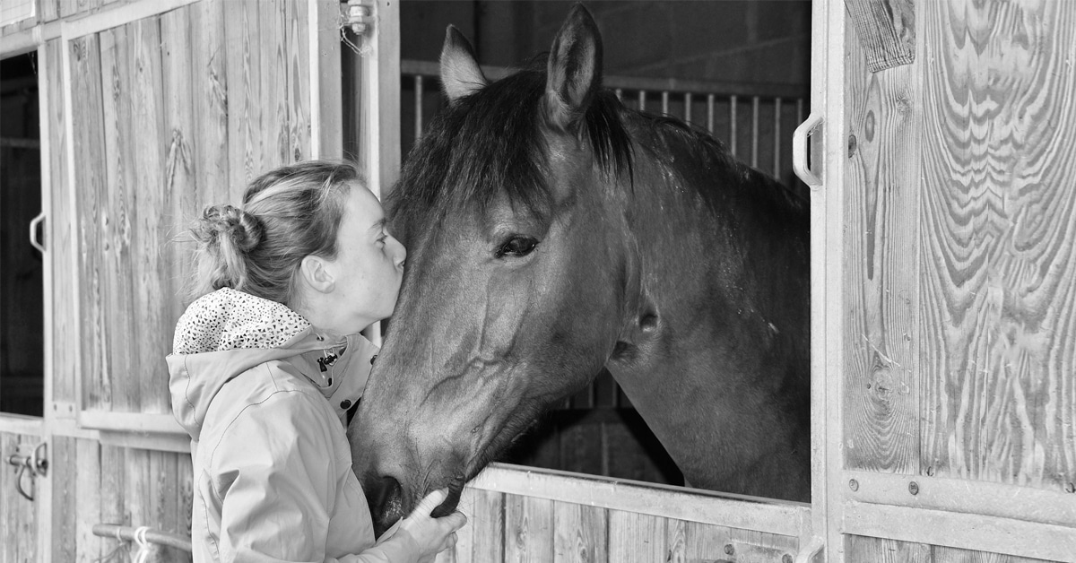 Thumbnail for Coping with Covid Fatigue Through Equine Therapy
