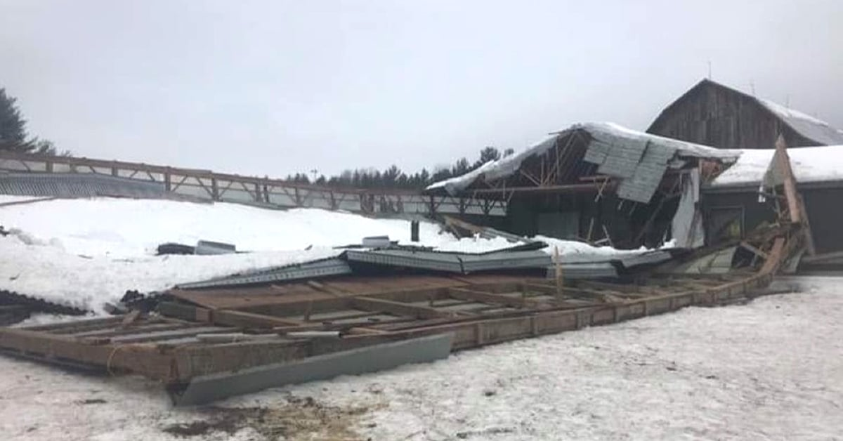 Thumbnail for Tragic Arena Collapse Prompts GoFundMe Campaign
