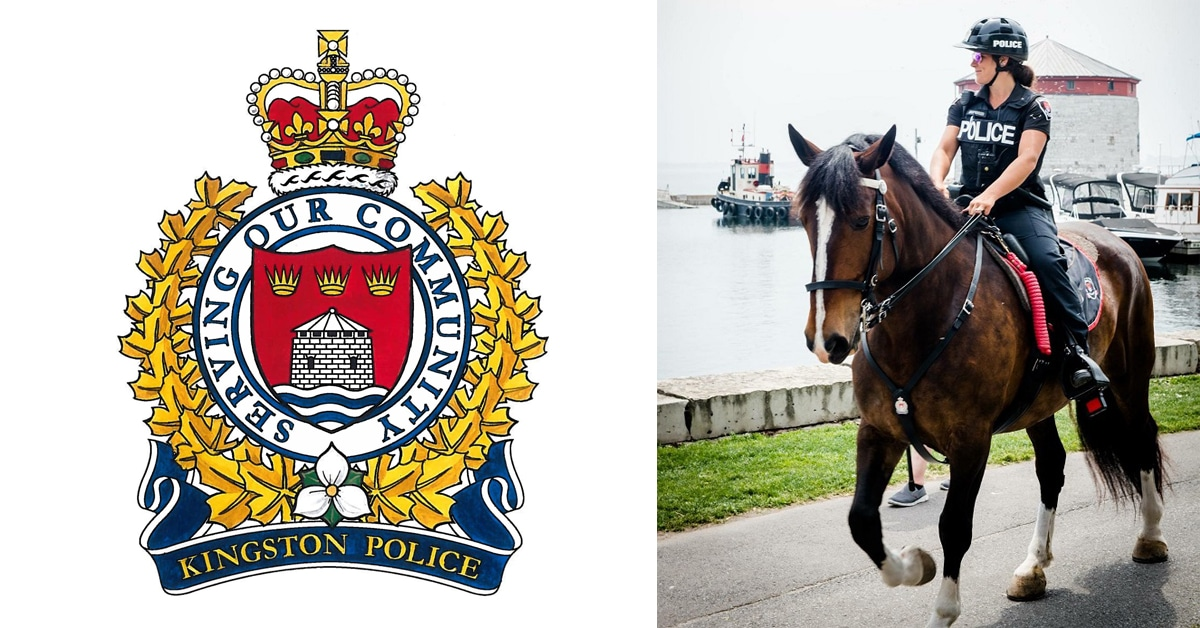 Thumbnail for Fundraiser Launched by Residents to Save Kingston's Mounted Unit