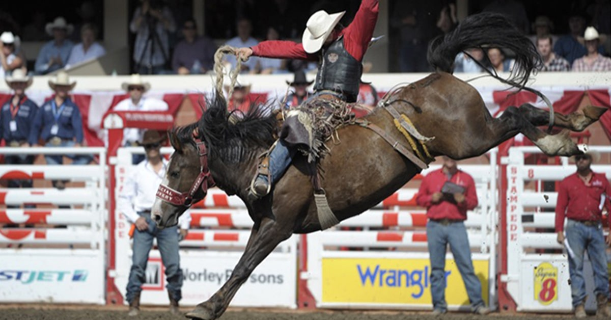 Thumbnail for Could Rodeo Soon Become Alberta's Official Sport?