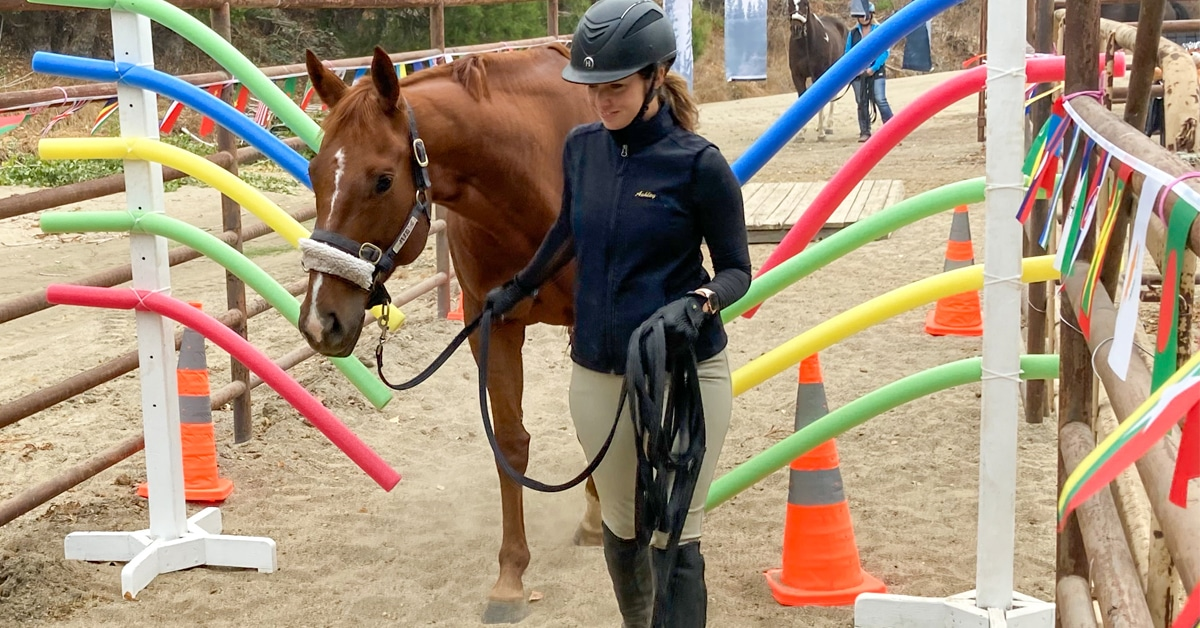 Thumbnail for Monty Roberts Joins the ASPCA's Adopt-A-Horse Month Initiative