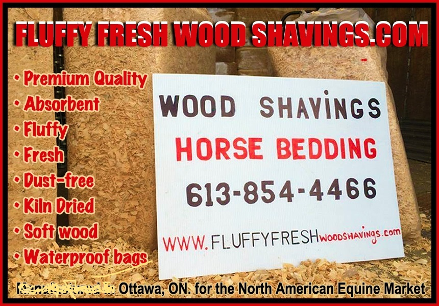 Horse Bedding Wood shavings - Miscellaneous - Classifieds