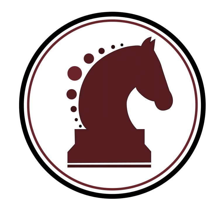Classifieds Horse Canada Horses For Sale Equine