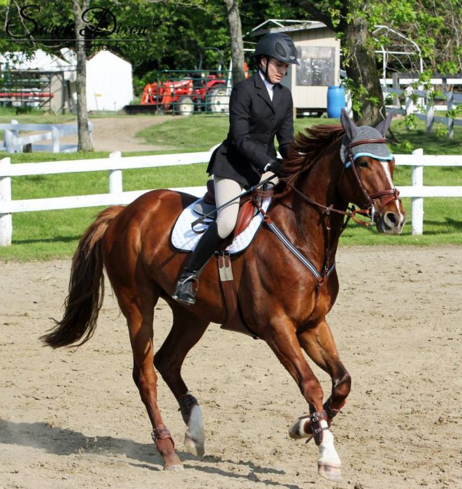 Show Ad - Horse Canada - Horses for Lease/Part Board ...