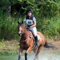 Bomb Proof Eventing THB, 12 Years Old, Gelding
