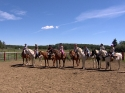 Horse-Riding-Stable-For-Sale-in-Central-Alberta