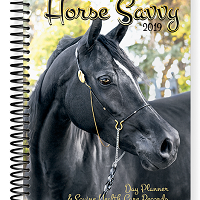 2019 Horse Savvy Day Planner & Equine Health Records