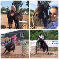 9yr old AQHA Barrel Horse for Sale
