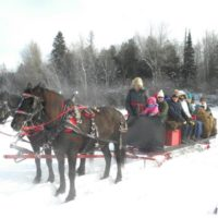 10 PASSENGER SLEIGH FOR SALE