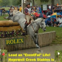 Hopewell Creek Stables is hosting a clinic with Ian Roberts