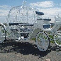 Roberts carriages over 60 models for youto choose from